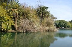 Lago de Palermo, Buenos Aires, Argentina royalty free stock photo