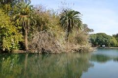 Lago de Palermo, Buenos Aires, la Argentina foto de archivo libre de regalías