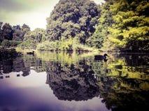 Lago de Parco Sempione em Milão foto de stock