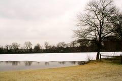 Lago de prata Fotos de Stock Royalty Free