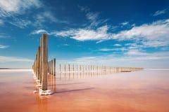 Lago de sal cor-de-rosa real de surpresa da cor e céu azul profundo fotos de stock royalty free