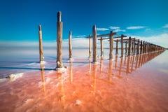 Lago de sal cor-de-rosa de surpresa da cor e paisagem profunda do céu azul foto de stock