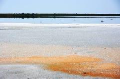 Lago de sal de Koyashskoye Imagem de Stock