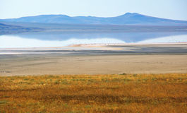 Lago de sal de Koyashskoye Fotos de Stock Royalty Free