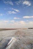 Lago de sal de la costa. arena salada. Imagen de archivo libre de regalías
