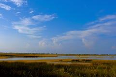 Lago de sal Overgrown cerca del mar Imagenes de archivo