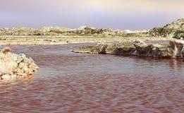 Lago de sal rosado hermoso y cielo dram?tico en Namibia, ?frica imágenes de archivo libres de regalías