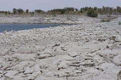 Lago de secagem com baixa linha costeira fotografia de stock royalty free