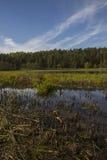 Lago de sequía en Europa Imágenes de archivo libres de regalías