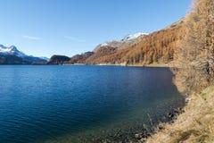 Lago de Sils Fotografia de Stock Royalty Free