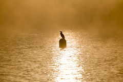 Lago de Viverone foto de archivo