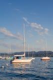 Lago de Zurich, tarde del verano Foto de archivo