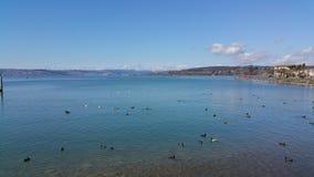 Lago de Zurique Foto de Stock