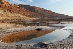 Lago dead Sea Fotos de Stock