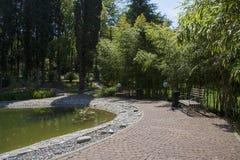 Lago decorativo com jardim Imagens de Stock