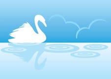 Lago del cisne de la silueta Imágenes de archivo libres de regalías