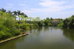 Lago del cisne negro del hotel de centros turísticos del tianzhu Foto de archivo