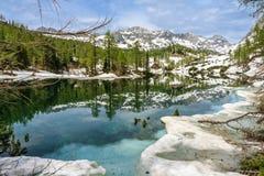 Lago del doppio di Triglav con i larici in primavera Immagine Stock