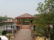Lago del giardino botanico di Dacca, Bangladesh fotografia stock libera da diritti