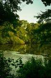 Lago del hidin dell'acqua Fotografie Stock Libere da Diritti