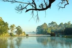 Lago del jardín botánico Fotografía de archivo