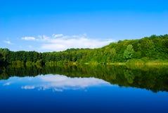 Lago del legno Fotografie Stock Libere da Diritti