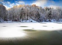 Lago del legno - paesaggio di inverno Immagine Stock