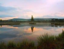 Lago del otoño de la alba Duplique el nivel del agua en el bosque misterioso, árbol de abedul joven en la isla en centro Foto de archivo libre de regalías