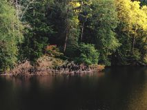 Lago del parque de estado de Sylvia del lago Imágenes de archivo libres de regalías