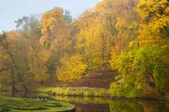 Lago del parque del otoño con el bosque de oro imagen de archivo libre de regalías