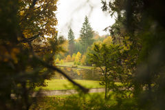 Lago del parque del otoño en fondo fotos de archivo