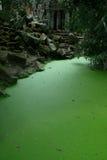 Lago del tempiale dell'AT Prohm Immagini Stock