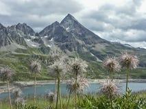 Lago del Toggia  in Formazza valley Stock Image