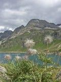 Lago del Toggia  in Formazza valley Royalty Free Stock Photos