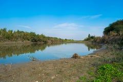 Lago dell'acqua blu nel ajungle fotografie stock libere da diritti