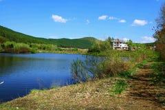 Lago dell'anatra di mandarino Fotografie Stock Libere da Diritti