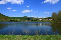 Lago dell'anatra di mandarino Immagine Stock Libera da Diritti