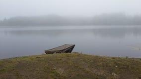 lago della foresta ad alba nella nebbia fotografie stock libere da diritti