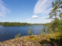 Lago della foresta della costa Fotografia Stock
