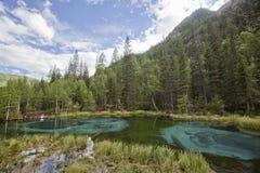 Lago della montagna del geyser con argilla blu Altai, Russia Fotografia Stock Libera da Diritti