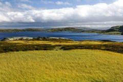 Lago della Norvegia Fotografie Stock