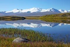 Lago della riva della steppa del paesaggio, plateau di Ukok, Altai, Siberia, Russia Fotografia Stock Libera da Diritti