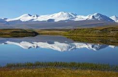 Lago della riva della steppa del paesaggio, plateau di Ukok, Altai, Siberia, Russia Fotografia Stock