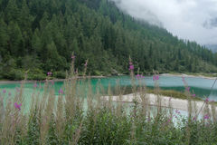 Lago delle fate Royalty Free Stock Photography