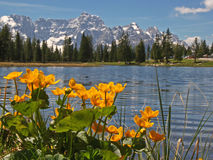 Lago di Antorno Royalty Free Stock Image