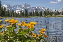 Lago di Antorno in Dolomites Stock Image