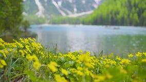 Lago di Braies vídeos de arquivo