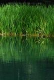Lago di Braies - Pragser Wildsee, Tirol sul, dolomites Fotografia de Stock