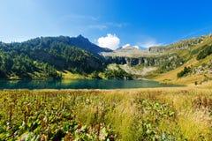Lago di Campo - Adamello Trento Italien Stockfotografie