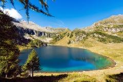 Lago di Campo - Adamello Trento Italien Stockbild